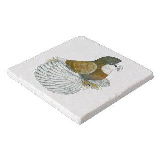 Trumpeter Pigeon AOC Baldhead Trivet