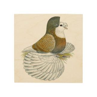 Trumpeter Pigeon AOC Baldhead Wood Print