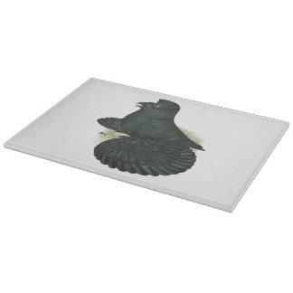 Trumpeter Pigeon Black Boards