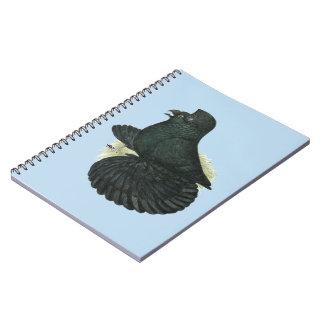 Trumpeter Pigeon Black Notebooks