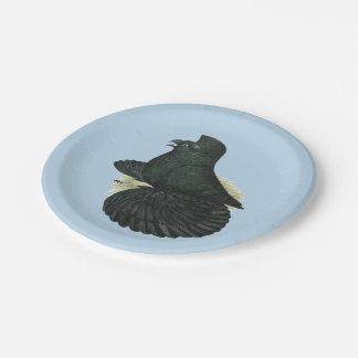 Trumpeter Pigeon Black Paper Plate