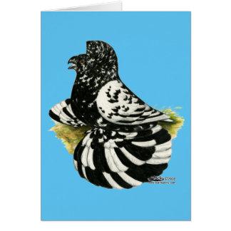 Trumpeter Pigeon Dark Splash Card