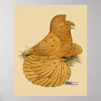 Trumpeter Pigeon Deroy Poster