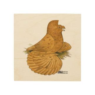 Trumpeter Pigeon Deroy Wood Wall Art