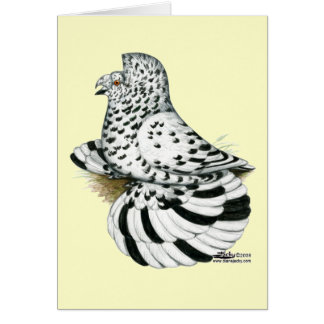 Trumpeter Pigeon Light Splash Card
