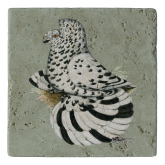 Trumpeter Pigeon Light Splash Trivet