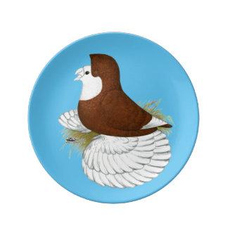 Trumpeter Pigeon Red Baldhead Plate