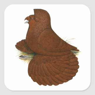 Trumpeter Pigeon Red Square Sticker