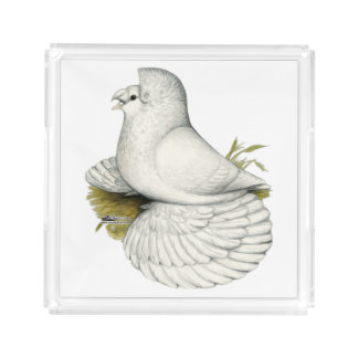 Trumpeter Pigeon White Acrylic Tray