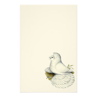 Trumpeter Pigeon White Stationery