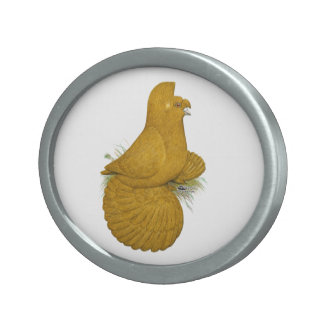 Trumpeter Pigeon Yellow Self Belt Buckle