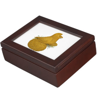 Trumpeter Pigeon Yellow Self Keepsake Box