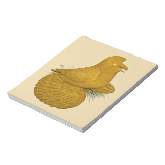 Trumpeter Pigeon Yellow Self Notepad