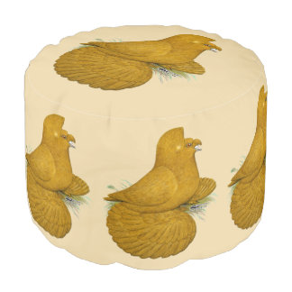 Trumpeter Pigeon Yellow Self Pouf