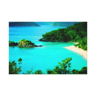 Trunk Bay Paradise Canvas Print