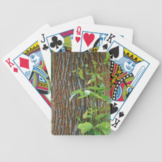 Trunk with Foliage Bicycle Playing Cards