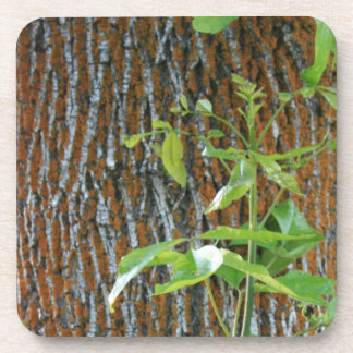 Trunk with Foliage Coaster