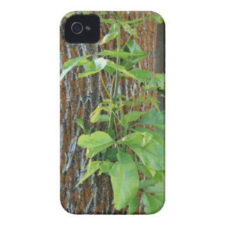 Trunk with Foliage iPhone 4 Case-Mate Case
