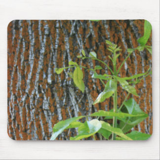 Trunk with Foliage Mouse Pad