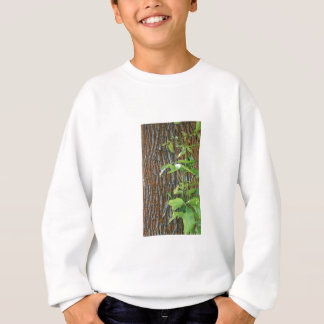 Trunk with Foliage Sweatshirt
