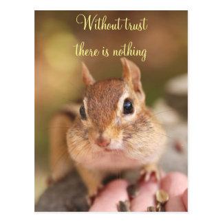 Trusting Chipmunk Postcard