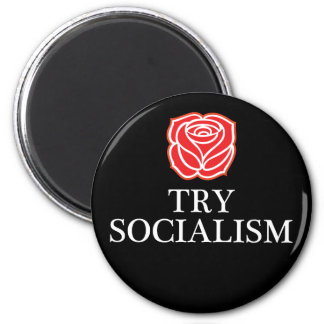 Try Socialism Magnet