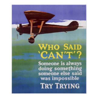 Try Trying Success Poster