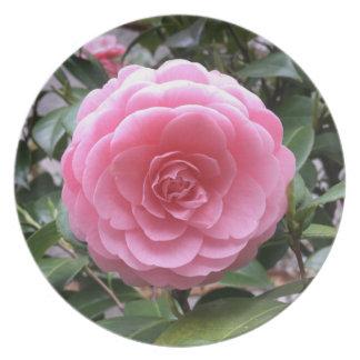 Tubaki Camellia Flower Plate