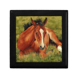 Tuckered Out - Resting Foal Keepsake Boxes