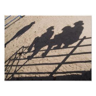 Tucson, Arizona : Ombres des concurrents de rodéo Impressions Photo