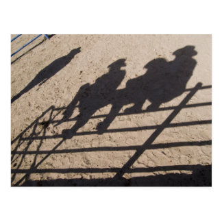 Tucson, Arizona: Shadows of Rodeo competitors Postcard