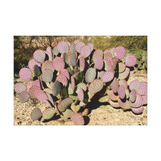 Tucson Cactus Canvas Print