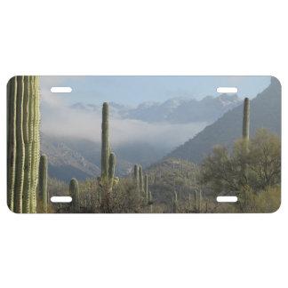 Tucson Desert License Plate