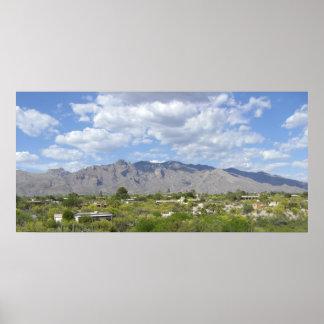 Tucson Landscape Poster