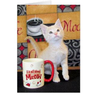 Tuffy McDuff's Mocha Dream Birthday Card