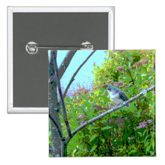 Tufted Titmouse Fledgling Baby Bird 2 Inch Square Button