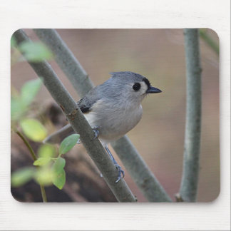 Tufted titmouse mouse pad