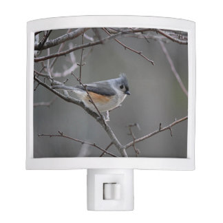 Tufted titmouse night lite