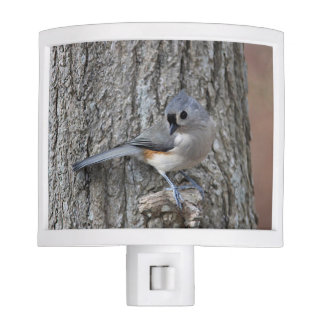 Tufted titmouse nite lites