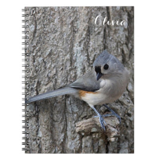 Tufted titmouse notebooks
