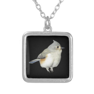 Tufted Titmouse on Black - Bird Silver Plated Necklace