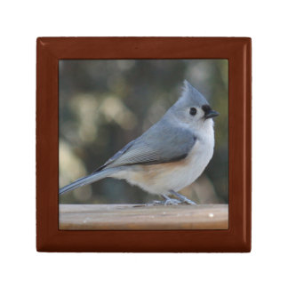 Tufted titmouse photography gift box