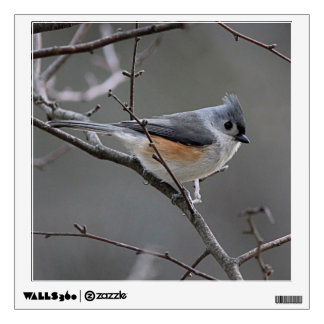 Tufted titmouse wall decal