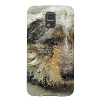 Tug at Heart Corgi Terrier Mix Dog Galaxy S5 Cases
