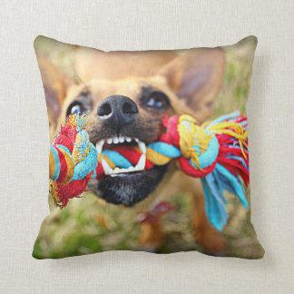 Tug o War Chihuahua Throw Pillow
