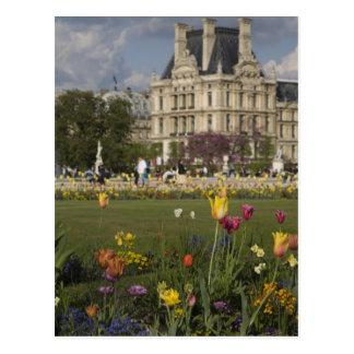 Tuileries Garden, Louvre, Paris, France Postcard