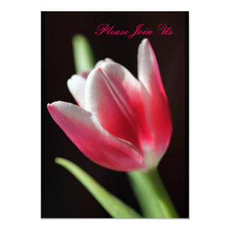"""Tulip 5"""" X 7"""" Invitation Card"""