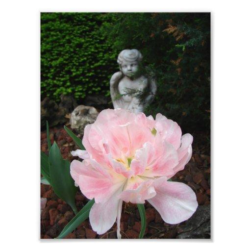 Tulip and Cherub Photo Print
