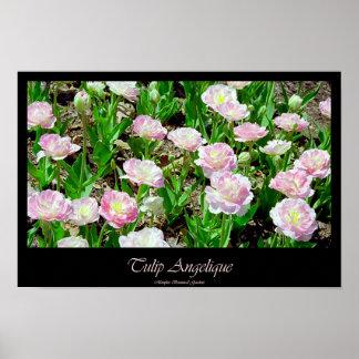 Tulip Angelique Poster
