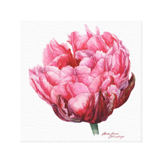 Tulip. Botanical watercolor Canvas Print